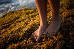 toes_moss