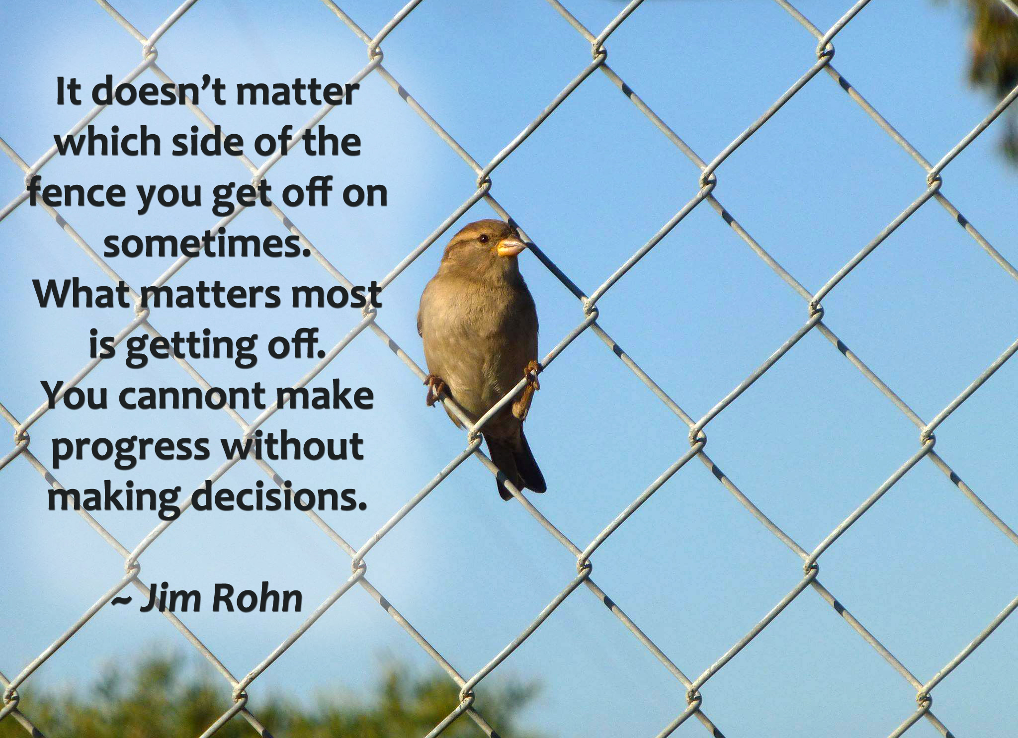 Fence Quotes Writing And Decision Making