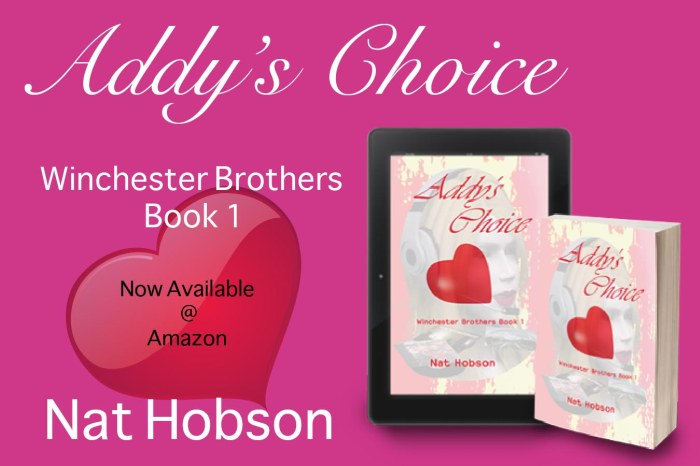 Andys Choice Promotional Banner