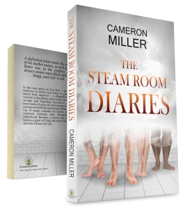 The Steam Room Diaries 3D large